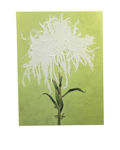 "New York Botanical Garden ""All About Green"" Giclée on Canvas"