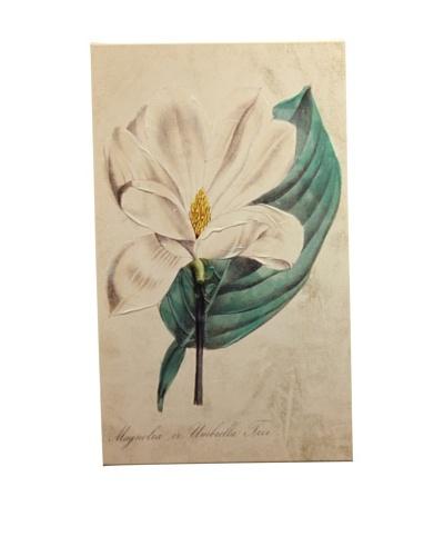 New York Botanical Garden Serene White Botanical Giclée on Canvas
