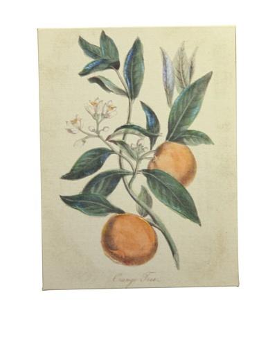 """New York Botanical Garden """"Botanicals"""" Giclée on Linen Canvas"""