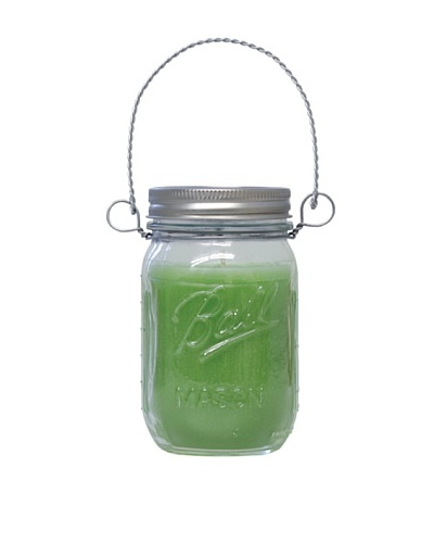 Northern Lights Candles 12-Oz. Crisp Green Apple Mason Jar Candle