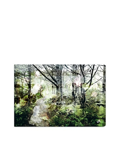 Oliver Gal Walk in the Woods Canvas Art