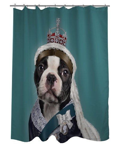 Pets Rock Queen Shower Curtain