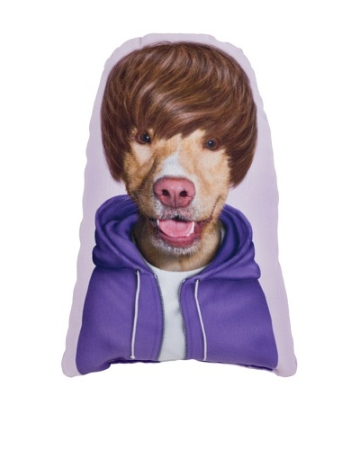 "Pets Rock ""Teen"" Pillow"