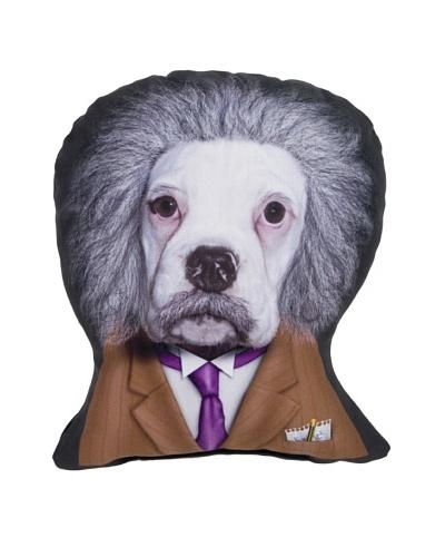 Pets Rock Brain Pillow