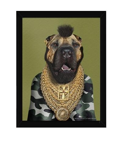 Pets Rock Fool Framed Art