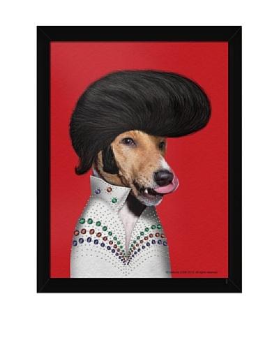 Pets Rock Rock n' Roll Framed Art