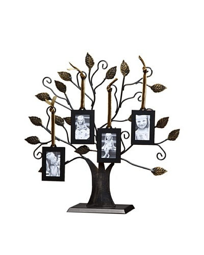 Philip Whitney Medium Tree of Life Frame Set