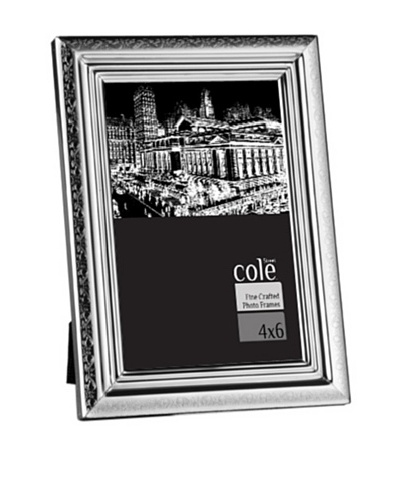 "Philip Whitney Etched Silver Border 4""x6"" Frame"