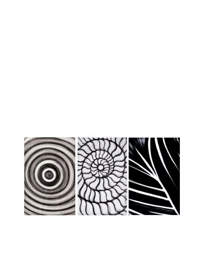 Phillips Collection Set of 3 Codigos Abstract Wall Décor, Black/White