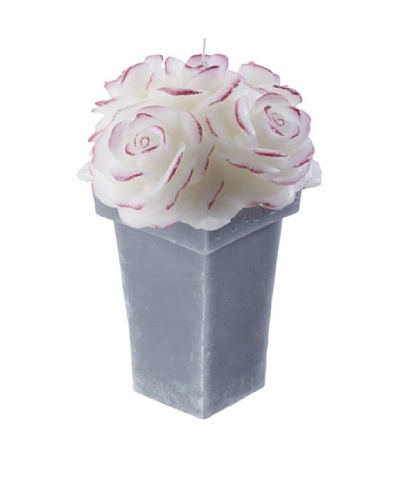 Point a la Ligne Scented Victoria Rose Candle In Wax Pot, White, Large