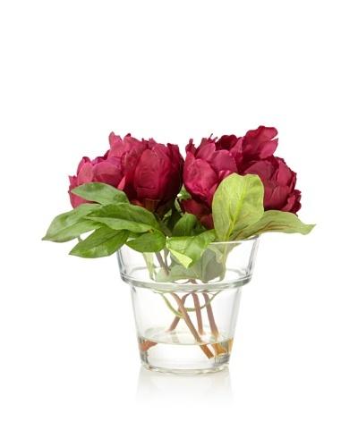 Winward Peony In Mussi Vase