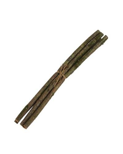 RAZ Faux Moss Branch Bundle