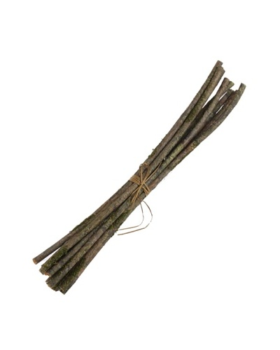 """RAZ 27"""" Faux Moss Branch Bundle"""