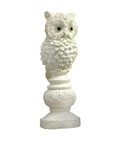 RAZ Set of 2 Owls