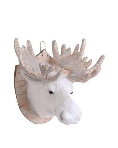 RAZ 11.5 Mounted Moose Head