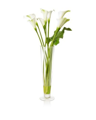 Winward Faux Calla in Flute Vase, White, White