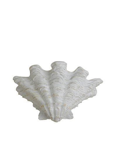 Shades of Light Scallop Shell Wall Sconce