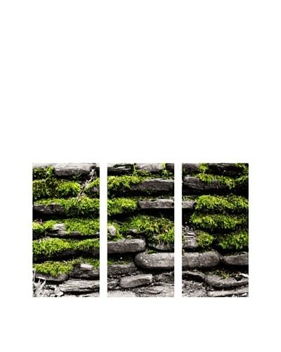 Art Addiction Stone/Moss, Triptych