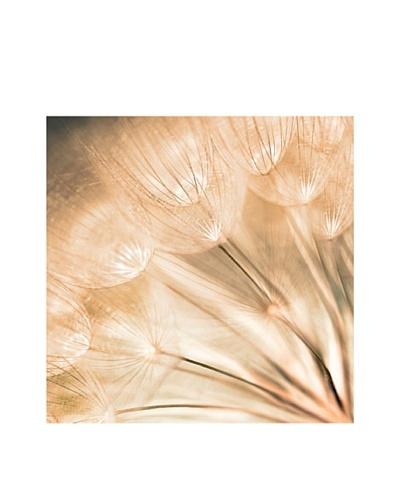 Art Addiction Dandelion Seed I