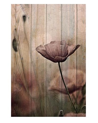 """Art Addiction Woodflower II 36"""" x 24"""" Acrylic Panel"""