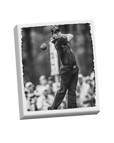 Steiner Sports Memorabilia Rory McIlroy Stretched Canvas