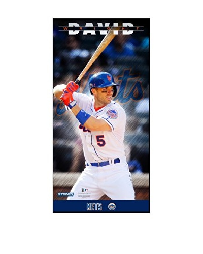 Steiner Sports Memorabilia David Wright New York Mets Player Profile Framed Photo