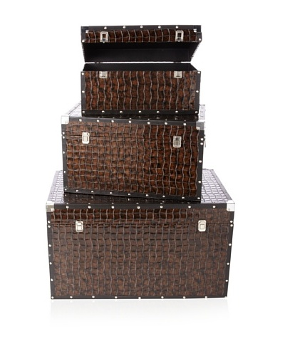 Firefly Home Collection Set of 3 Brown Trunk Sets