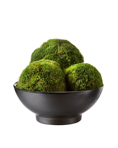 Forever Green Art Moss Ball Set with Italian Clay Bowl