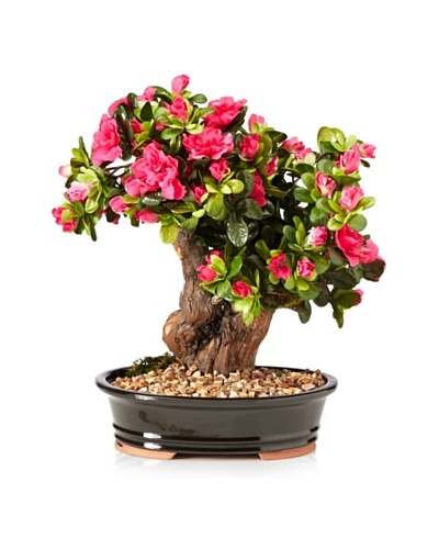 Forever Green Art Artificial Azaela Bonsai Tree