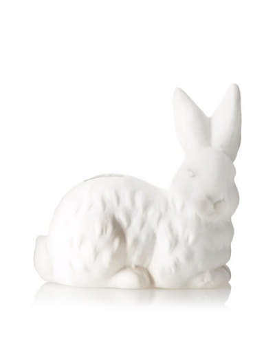 The HomePort Collections Rested Cottontail Ceramic Bank