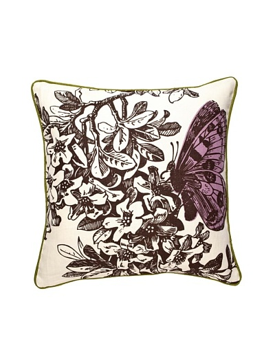 Thomas Paul 18 Metamorphosis Curiosities Pillow