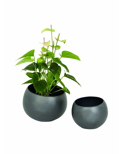 Torre & Tagus Rock Ball Pot [Black]
