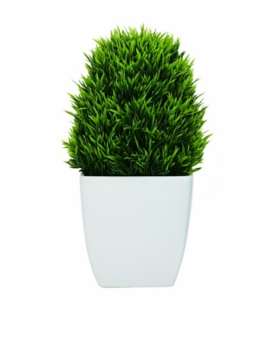 Torre & Tagus Tapered Ceramic Potted Faux Grass, White, Large