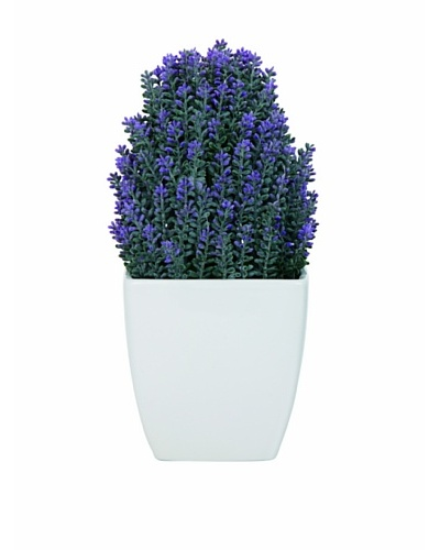 Torre & Tagus Tapered Ceramic Potted Faux Lavender, White, Large