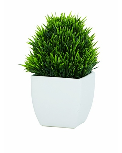 Torre & Tagus Tapered Ceramic Potted Faux Grass, White, Small