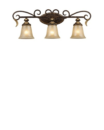 Trump Home Regency 3-Light Vanity Bar in Burnt Bronze