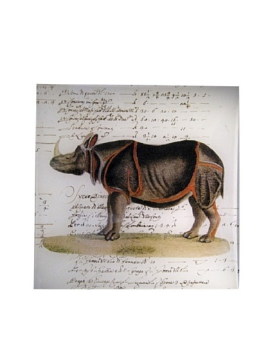 Twigs and Moss African Series Rhinoceros Glass Tray