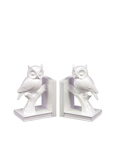 Urban Trends Collection Ceramic Owl Bookends, WhiteAs You See