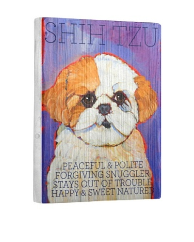 Ursula Dodge Shih Tzu Brown Reclaimed Wood Portrait