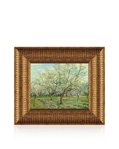 Vincent van Gogh The White Orchard, 1888 Framed Canvas