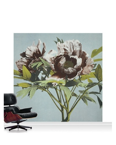 Victoria and Albert Museum Tree Peony Standard Mural - 8' x 8'
