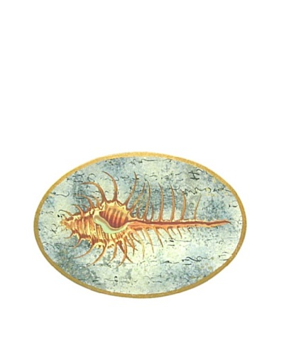 Victoria Fischetti Conch Shell Handmade Decoupage