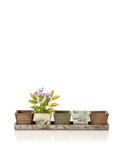 Wald Imports Rustic Planters & Tray Set, Assorted Finishes