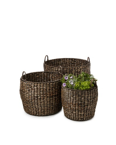 Wald Imports Set of 3 Twisted Seagrass Baskets/Planters, Espresso