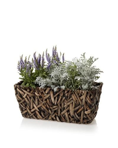 Wald Imports Small Rectangular Random Weave Seagrass Planter [Espresso]