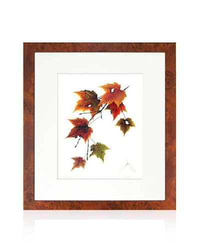 Maple Tree, Copper/White