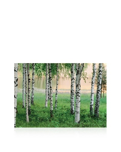 Nordic Forest Large Wall Mural
