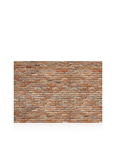 Exposed Brick Wall Mural