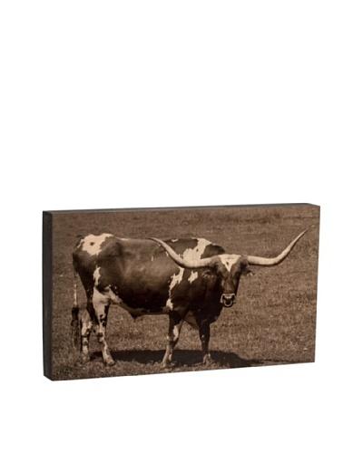 Walnut Hollow Longhorn Bull Wooden Shadowbox Plaque