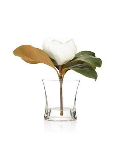 Winward Magnolia In Squeeze Vase